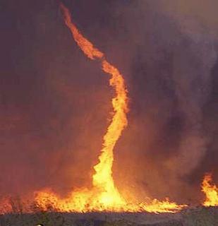 ปรากฏการณ์ธรรมชาติ เสาเพลิงหมุน สวยดีนะ ( Fire whirl ) Bca72d9657479ce53958274dc5f366b7